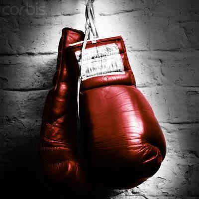 Полный список пар боксерского вечера 29 августа