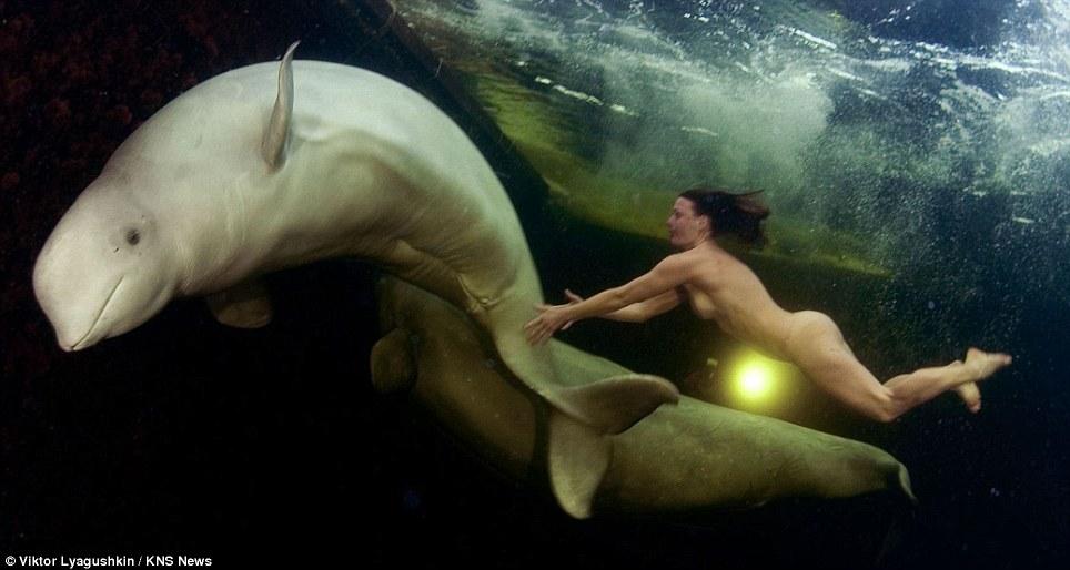 Гола спортсменка підкорювала білих китів (ФОТО 18+)