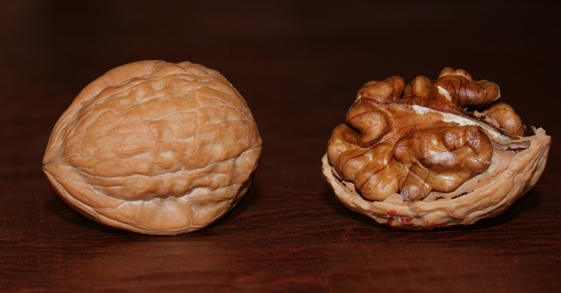 Это произойдет, если съесть всего 1 горсть орехов в день. Результат Вас удивит! (Фото)