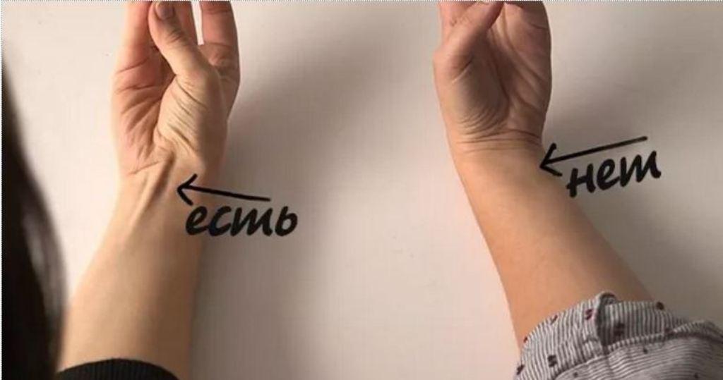 Стуліть мізинець і великий палець руки. Бачите сухожилля на зап'ясті? Ось що воно означає … (ФОТО)