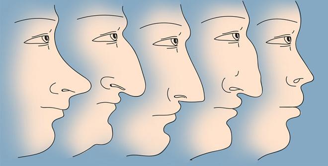 Ось що форма носа може розповісти про твій характер (Фото)