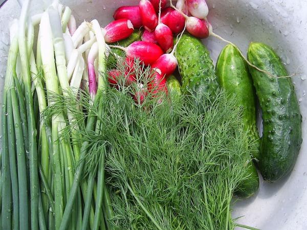 Як позбутись від нітратів в овочах та фруктах