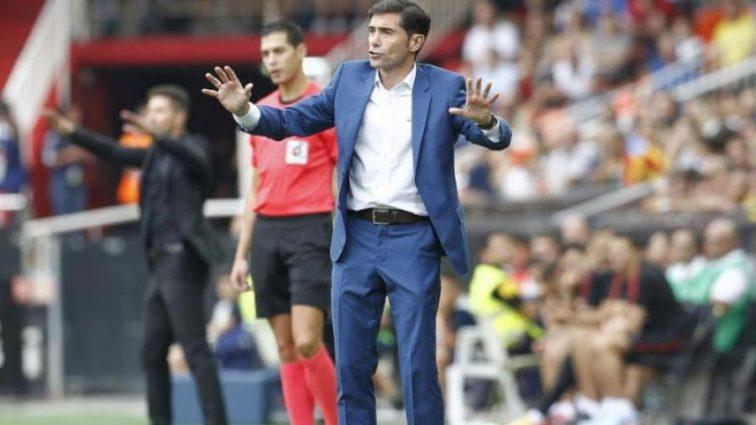 Тренера іспанського клубу госпіталізували після зіткнення з кабаном