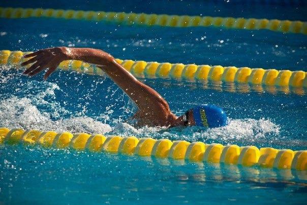 Українські плавці завоювали медалі у Мілані