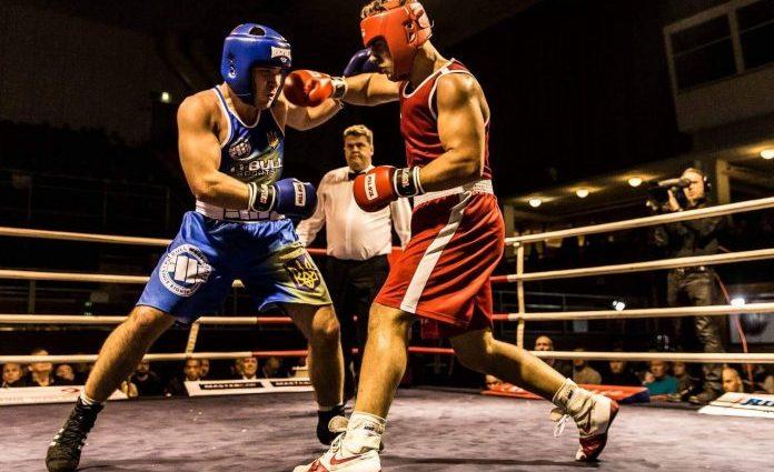 Українські боксери зібрали 14 медалей на турнірі в Словаччині